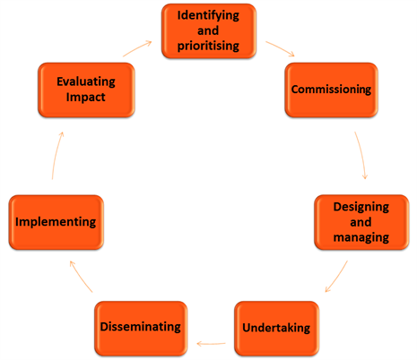 Diagram of the Research Cycle
